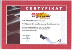 Сертификат официального дилера (Короп, Понорница)